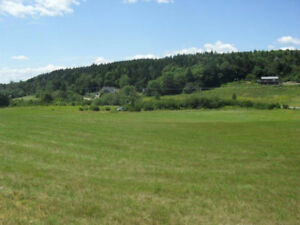 4.5 Beautiful Acres in Clifton Royal!