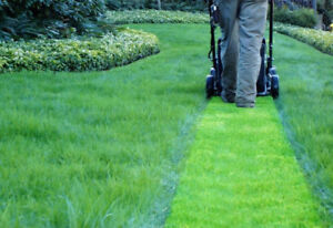 Property Beautifying Service: Lawn, Garden & Exterior Clean-ups