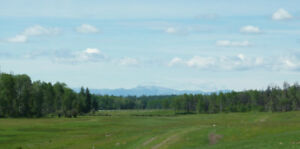 Ranch Land Acreage For Sale ~ North Green Lake Area ~ 1112 Acres