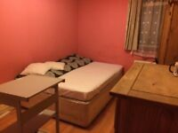 Lovely double room for rent in Turnpike Lane