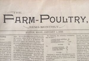 Large vintage poultry book from 1895