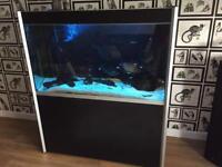 Fluval Profile 1200 Aquarium Fish Tank