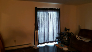 Roommate wanted to share large 2 bedroom apartment