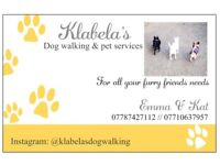 Professional dog walker & pet sitters covering surrounding areas