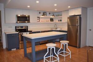 Executive Secondary Suite - fully furnished (1 bedroom, 1 bath)