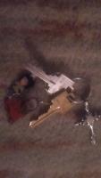 Lost keys found