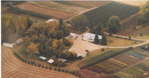 Bungalow & So Much More on 72 Acres in Sturgeon County!