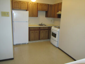 Near DownTown (MonthlyLease) PetsConsidered (2 bdrm-Aug1st)