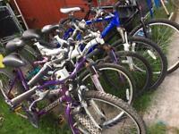 Six adult bikes