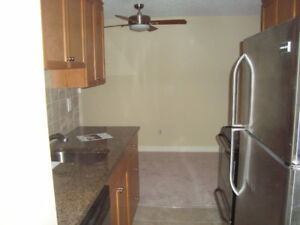 One bedroom with balcony and parking $975.
