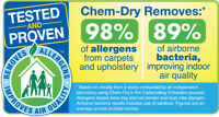 Professional Carpet/Upholstery Cleaners ChemDry of the North