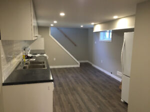 Gorgeous, Bright, Spacious 2 Bdrm Basement in Rockway