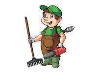 Gardener/Landscaper at affordable prices