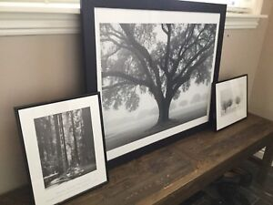 Framed prints ready for wall hanging.