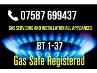 Gas Boiler Service, Installation, ALL TYPES OF WORK - LPG, OVEN HOBS COOKERS Belfast