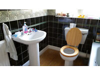 Bathroom wash basin and toilet unit to give away