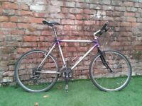 "20"" Scott Mountain Bike"