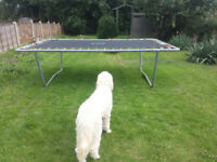 Large Trampoline, 220 x 320cm with 6'x 9' trapeze