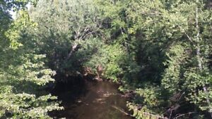75 acres with waterfront piece