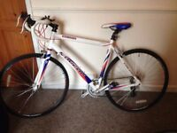 White Falcon Corsa bike for sale