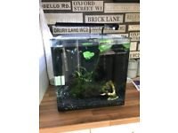 Aqua One 55 litre Fish tank with LOTS of accessories. Need gone ASAP