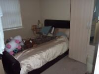 Double room AVAILABLE NOW! to rent in modern ground floor flat