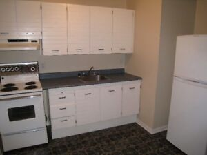 One Bedroom Apt. in Dartmouth, available August 1st, all incl.