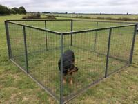 Animal cage panels (USED)