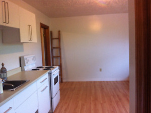 Quiet and clean one bedroom apartment located in Armdale(Sept 1)