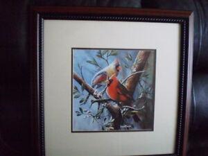 """Kevin Daniel Framed Print """"CARDINALS"""""""