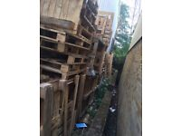 Palletts free to collect