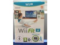 Wii Fit u game