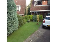Childwall valley tree surgery and garden maintenance
