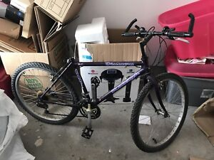 Discovery Raleigh Bike for Sale