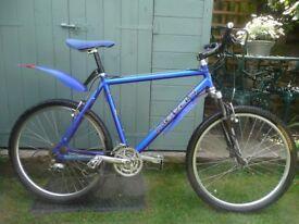 MERLIN MALT MOUNTAIN BIKE 20in. Col bolt blue metalic