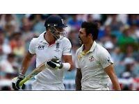 Cricketers needed