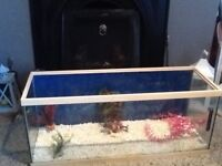Bare 3ft fish tank & Eheim Internal Pickup Filter