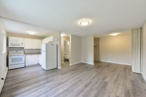 Great 1 bedroom apartments available now! Edmonton Edmonton Area image 11