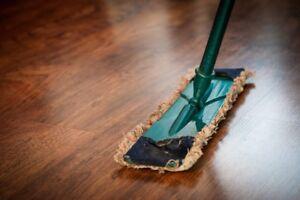 Cleaning service/ faire du ménage (20$/h)