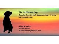 Free assessments Dog training and psychology