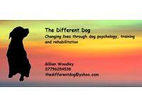 Dog training and psychology