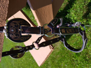 Horse sized show halter
