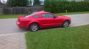 2007 Ford Mustang Cpe Coupe (2 door)