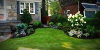 Landscaping, Lawn Cutting, Property Maintenance, Garbage Removal