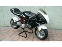 Grc rsr polini mini moto