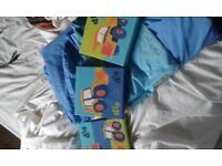Next Children's Single Duvet, pillow case and three pictures.