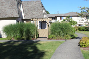 Close to UVic, 3 bed, 3 bath bright townhouse, Sept 1, 2017