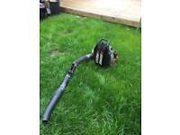 Echo leaf blower