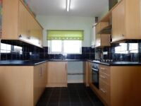 **AVAILABLE NOW** A SPACIOUS THREE bedroom flat located in DN33 area.