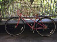 Pink Peugeot ladies retro 80's bike